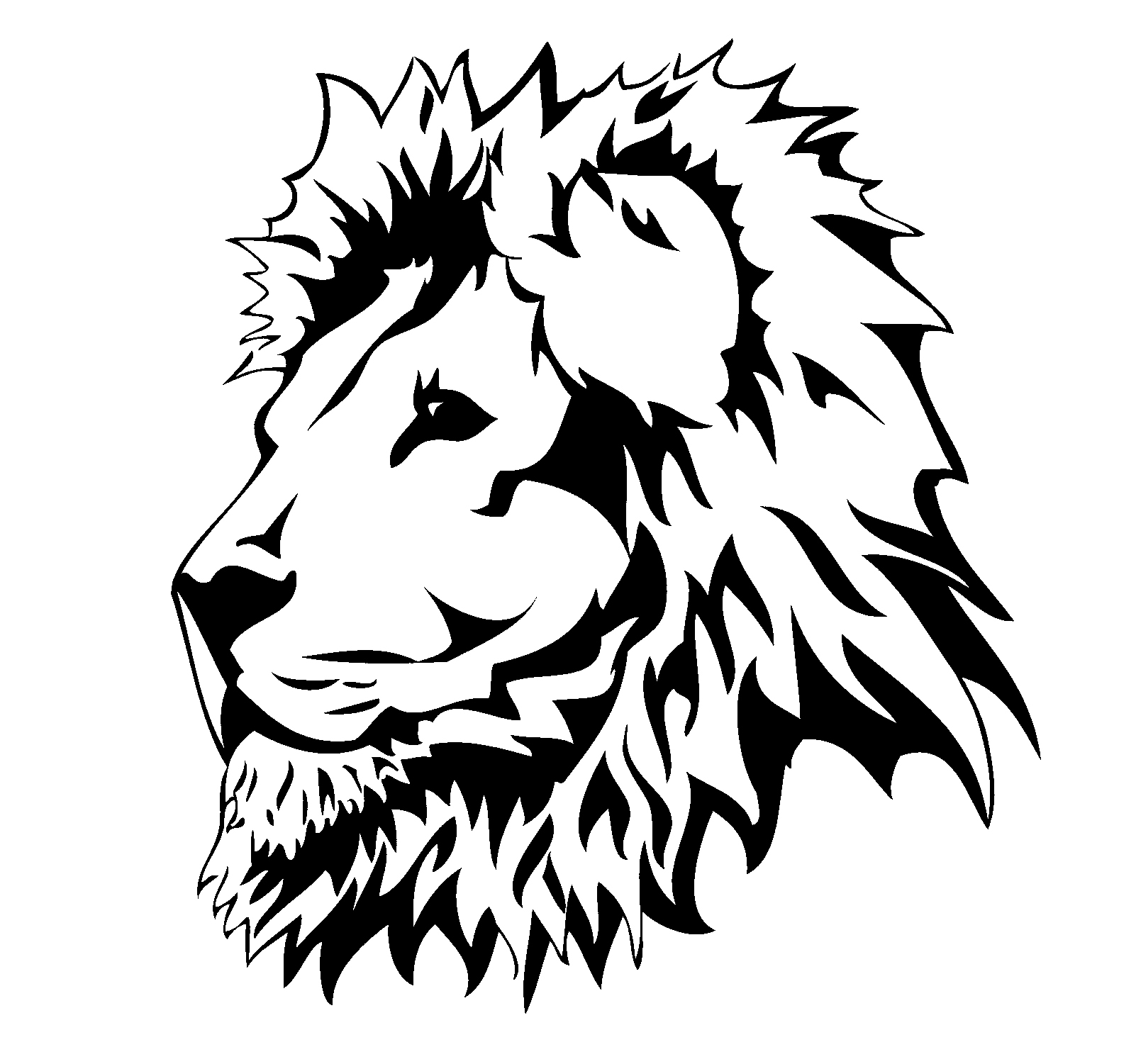 Picture Of Lion Head