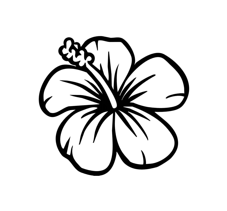 Hawaiian Flowers Drawings