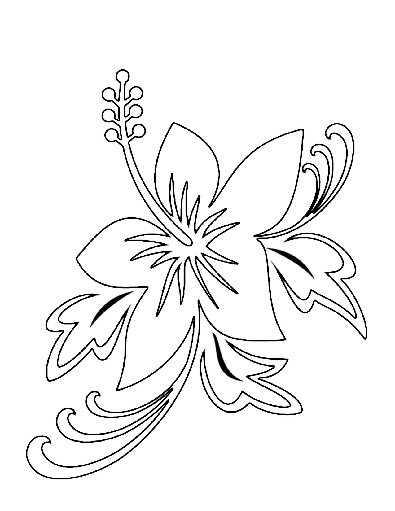 Hawaiian Flower Drawing