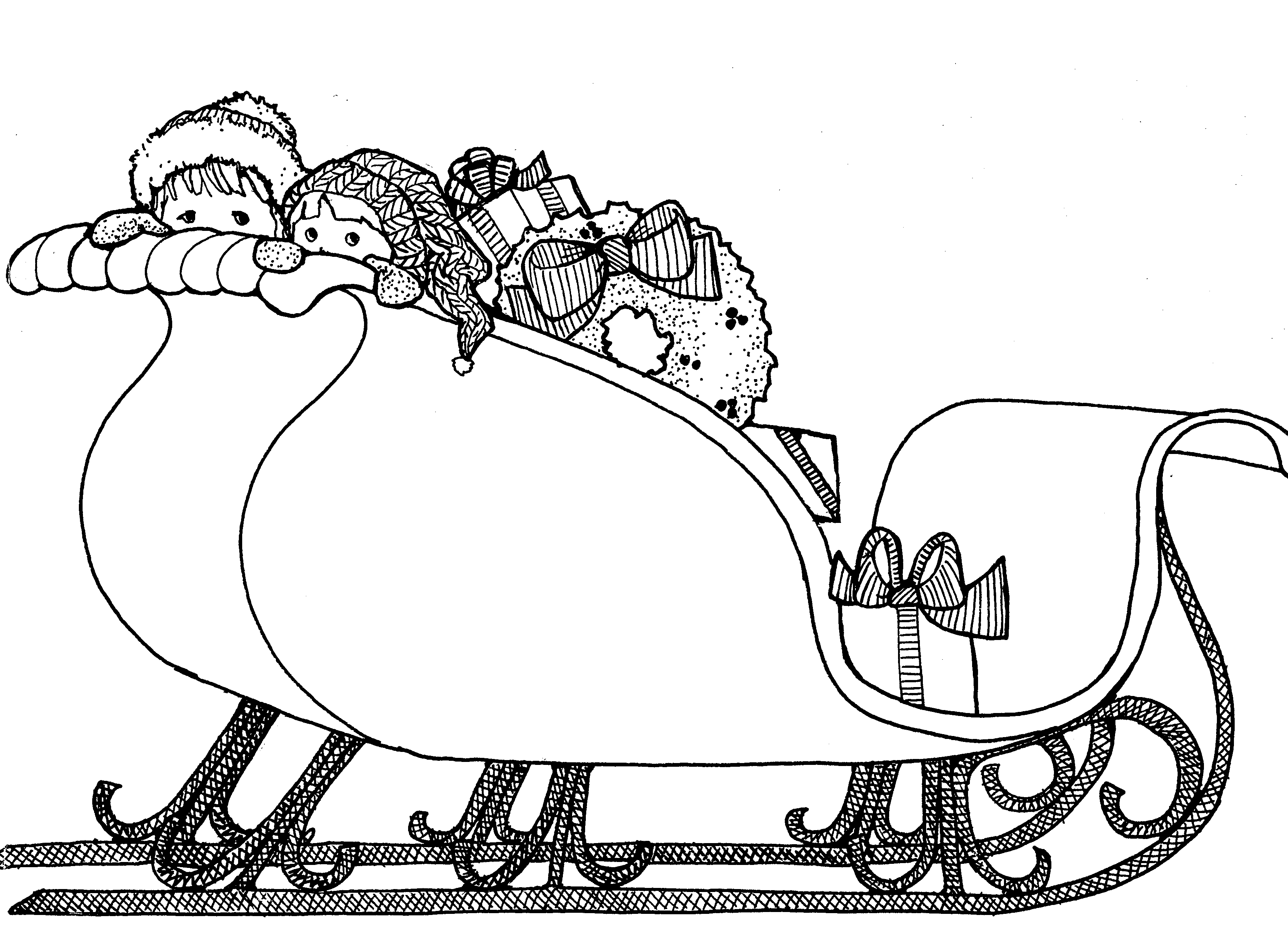 Sleigh Pictures