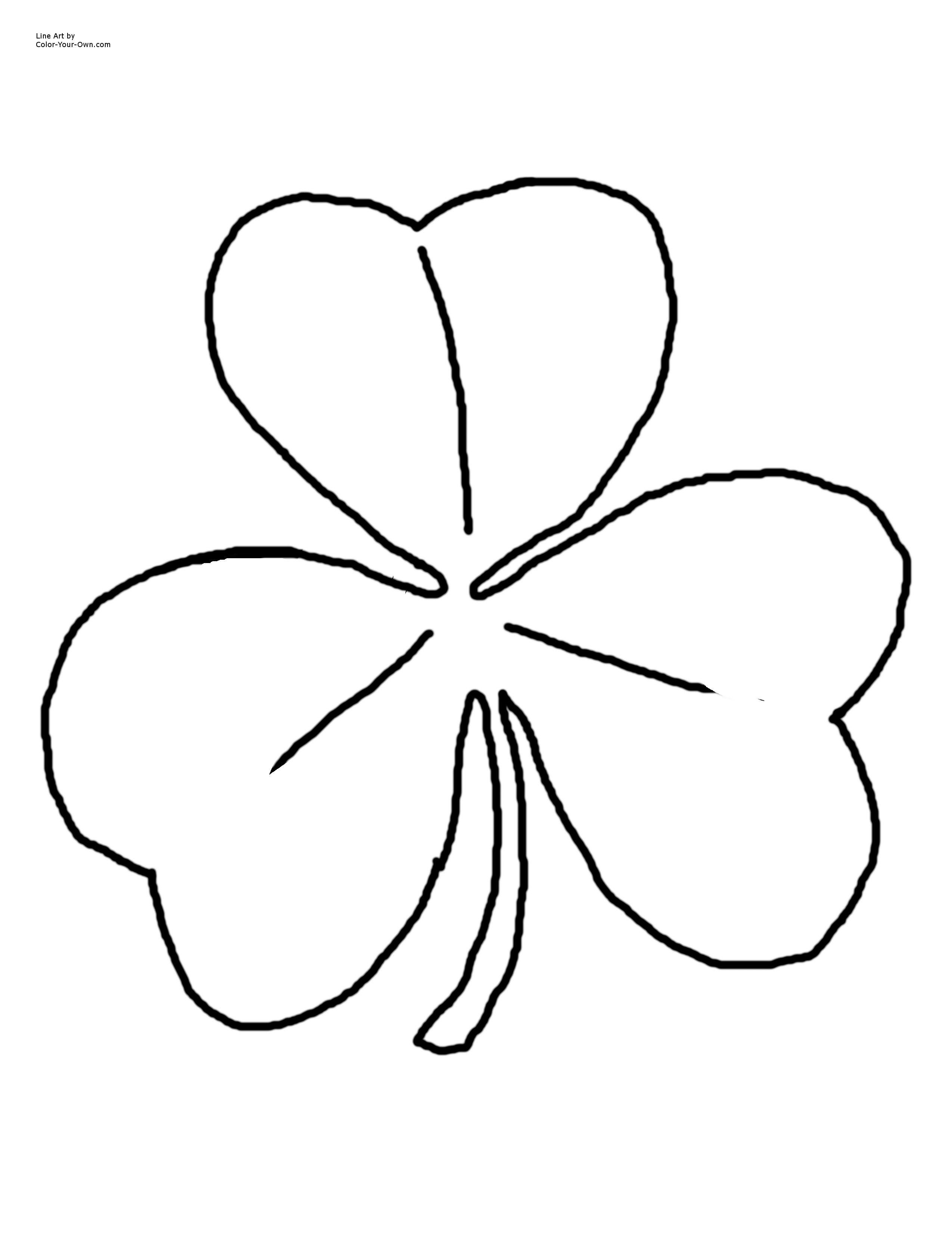 Irish Shamrock Drawing
