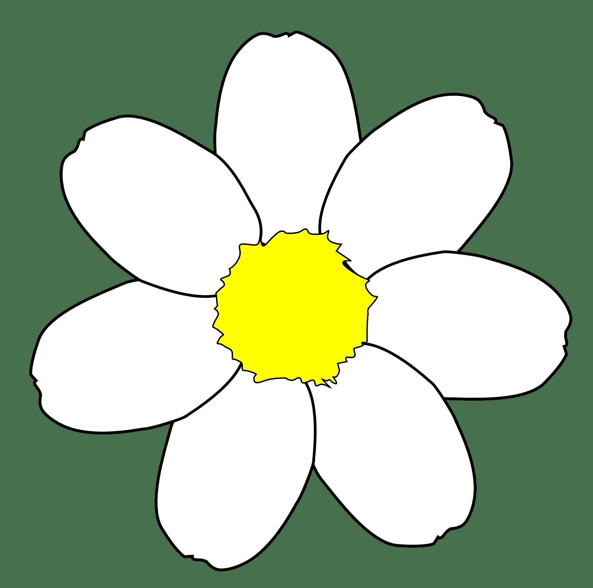 Daisy Flower Outline - ClipArt Best (1969 x 1952 Pixel)