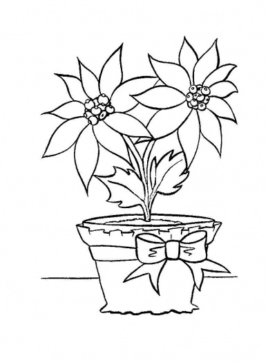 flower pot coloring page coloring pages of flower pots