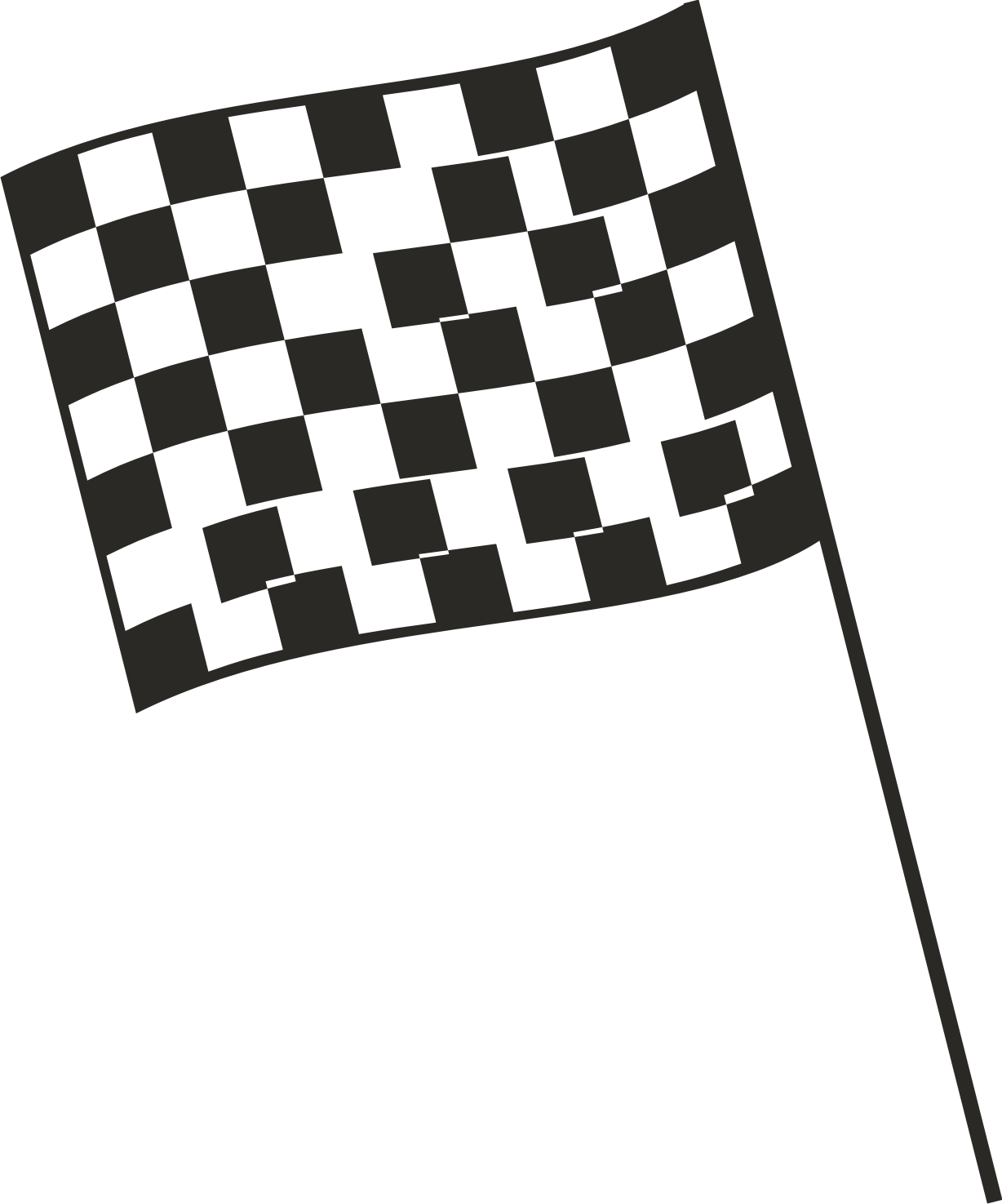 Race Car Flag
