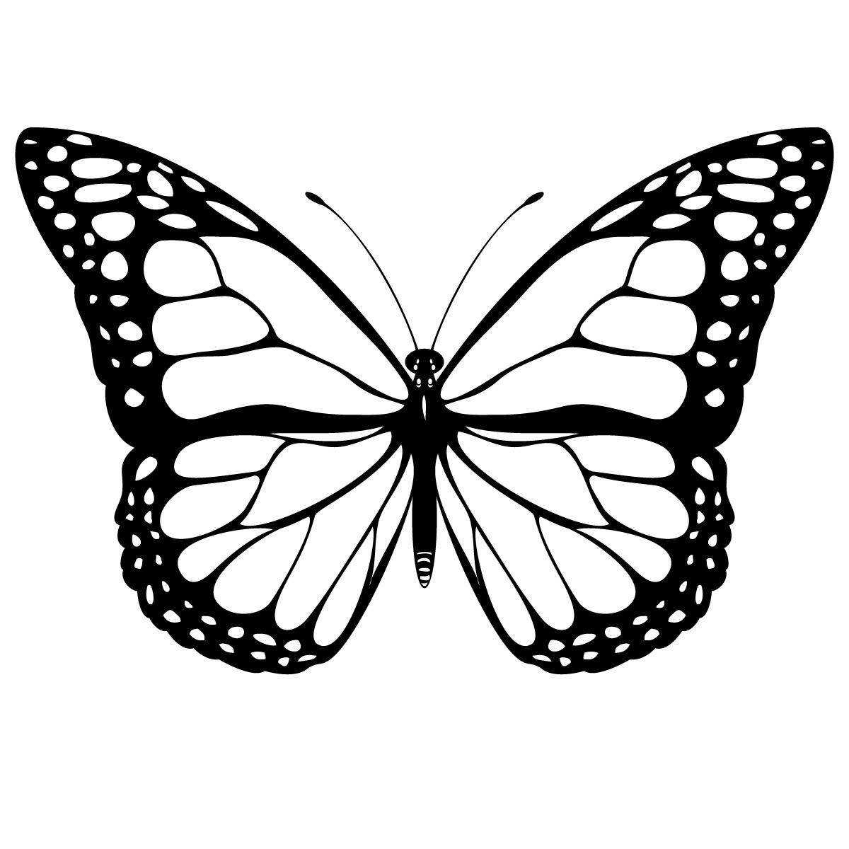 Butterflies Clipart Kids