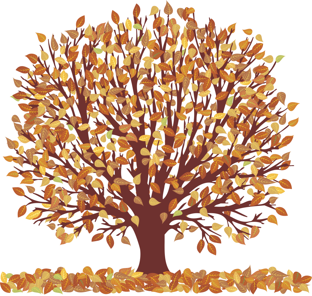 Picture Of Tree With Leaves - ClipArt Best (1024 x 973 Pixel)