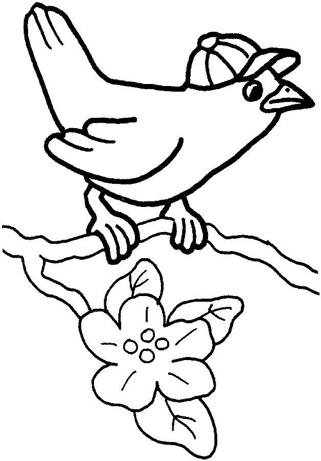 cute bird coloring page for kids free printable picture clipart