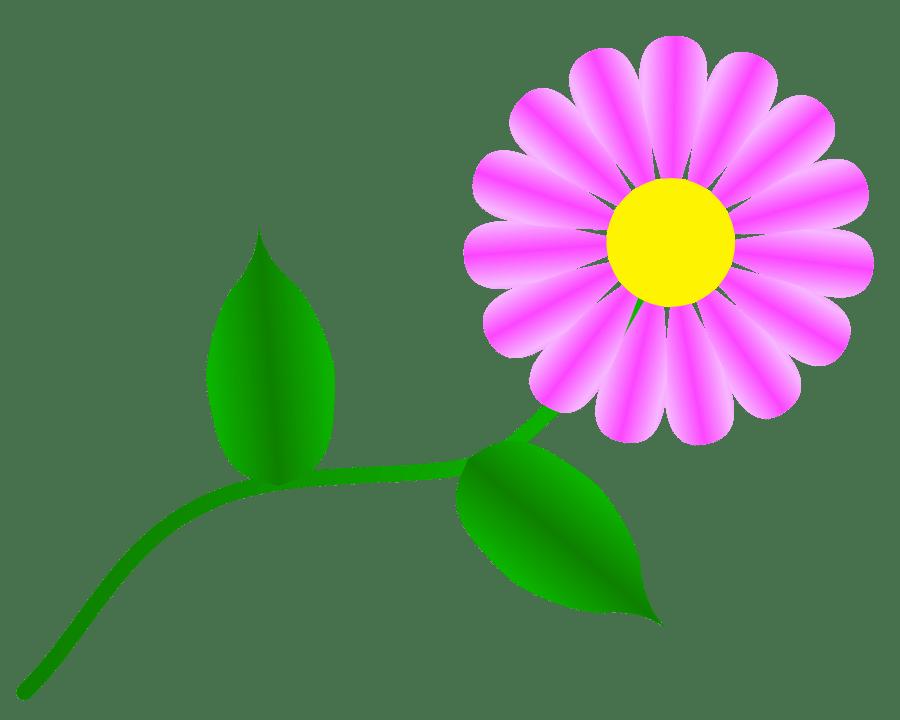 Free Daisy Flower Clip Art - ClipArt Best (900 x 720 Pixel)