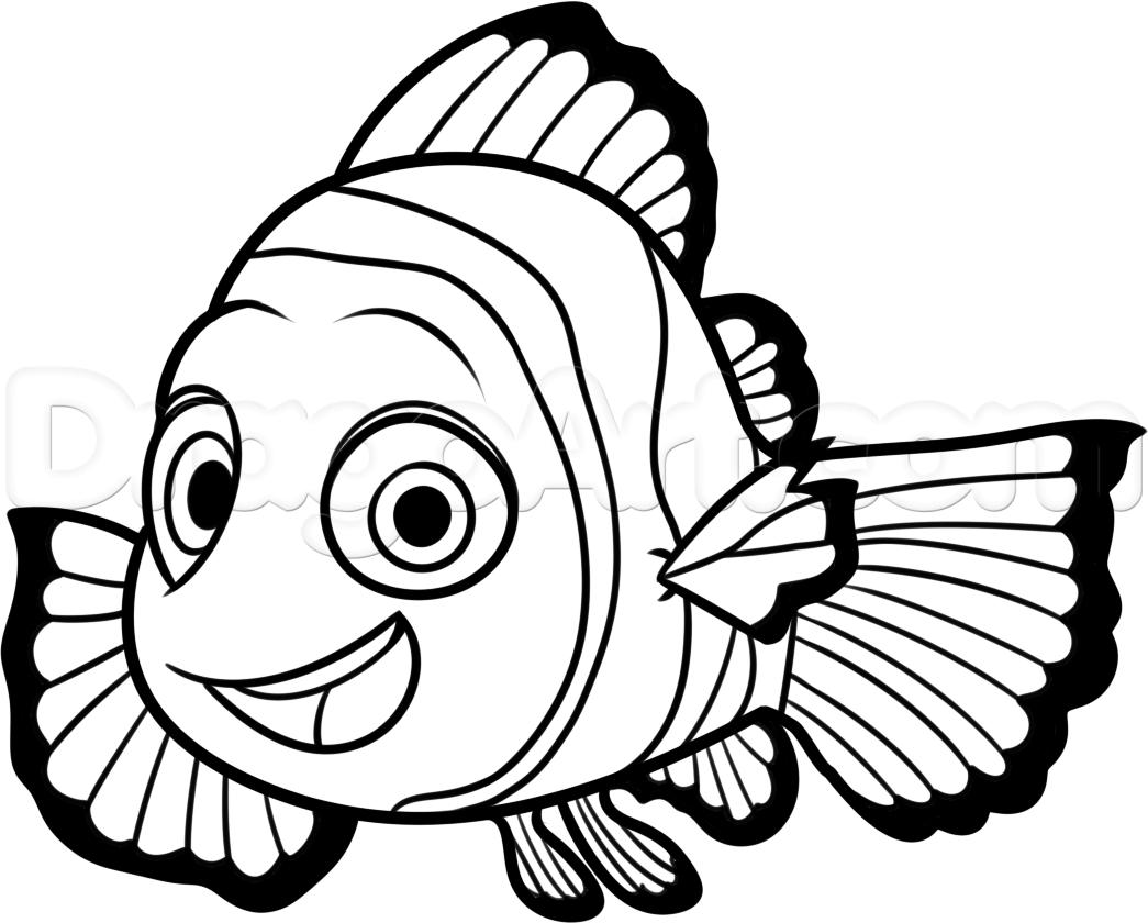 Nemo Outline