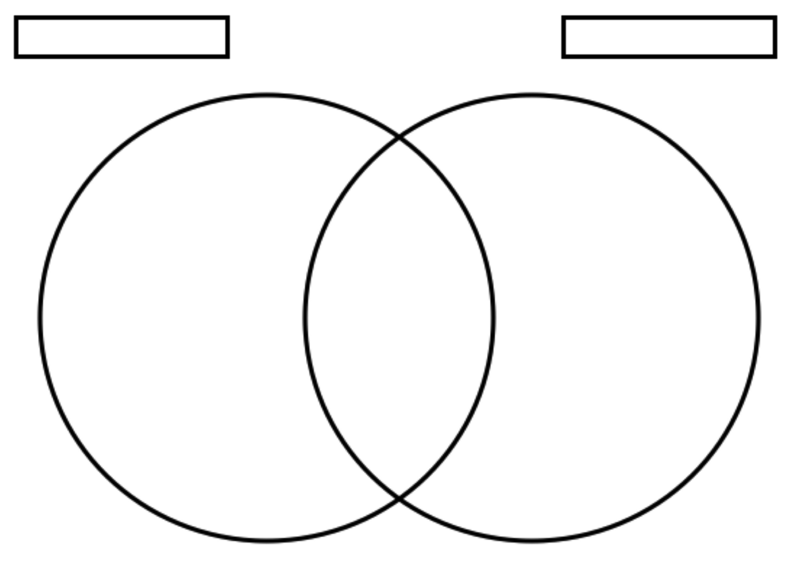 Vertebrea Diagram Blank