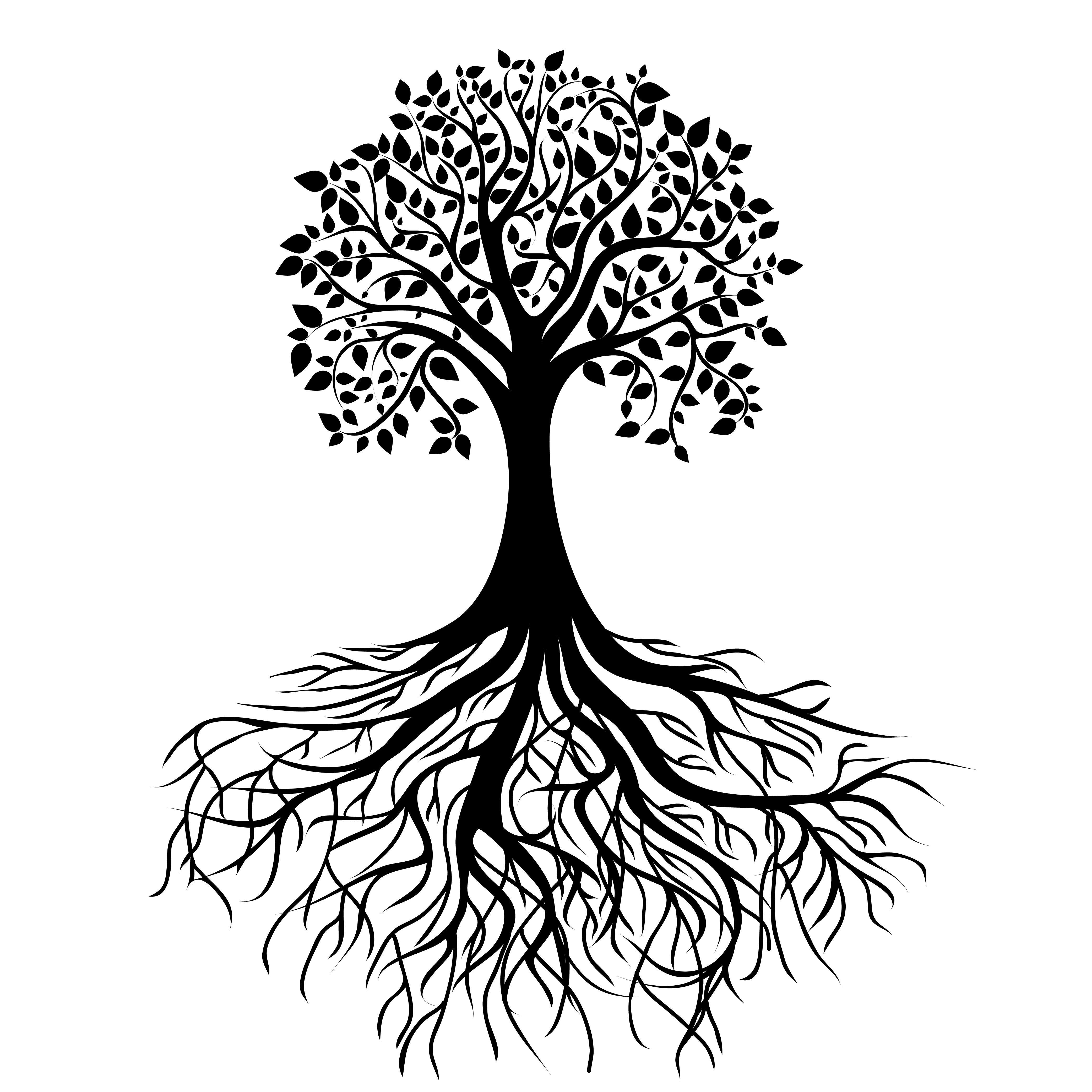 Oak Tree Line Drawing