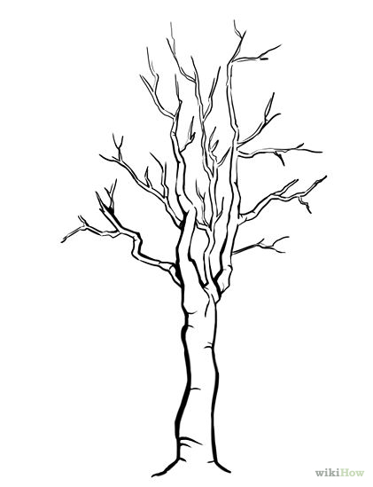 tree trunk with no leaves coloring pages