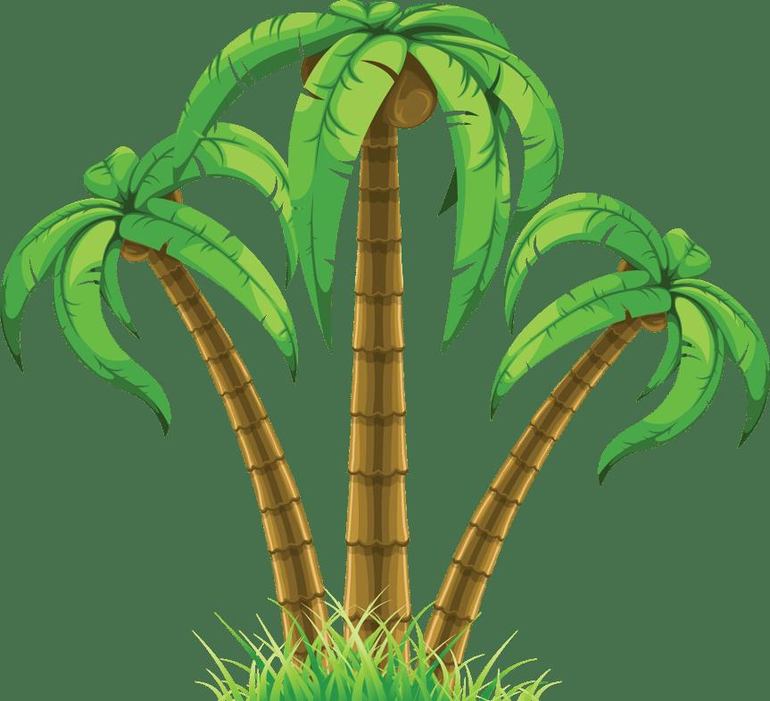 Coconut Tree Png - ClipArt Best (863 x 786 Pixel)