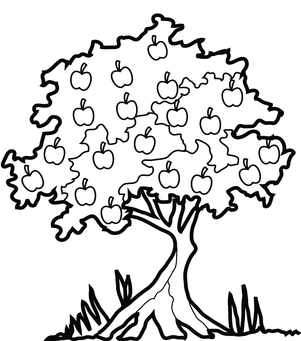 tree coloring pages apple tree with apples great coloring page