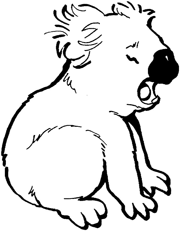 koala coloring page free coloring pages for kids