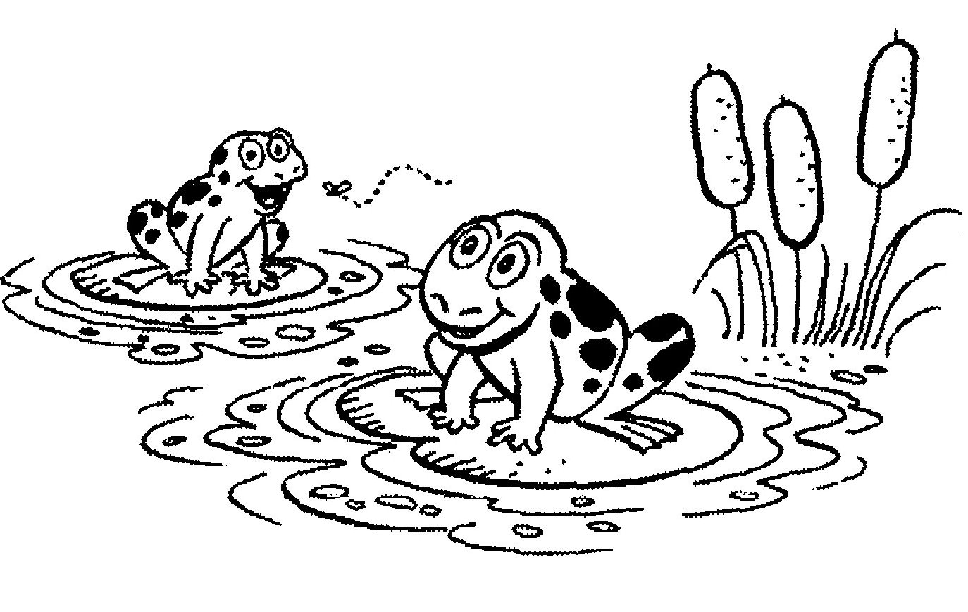 2 Frogs On A Lily Pad Clip Art