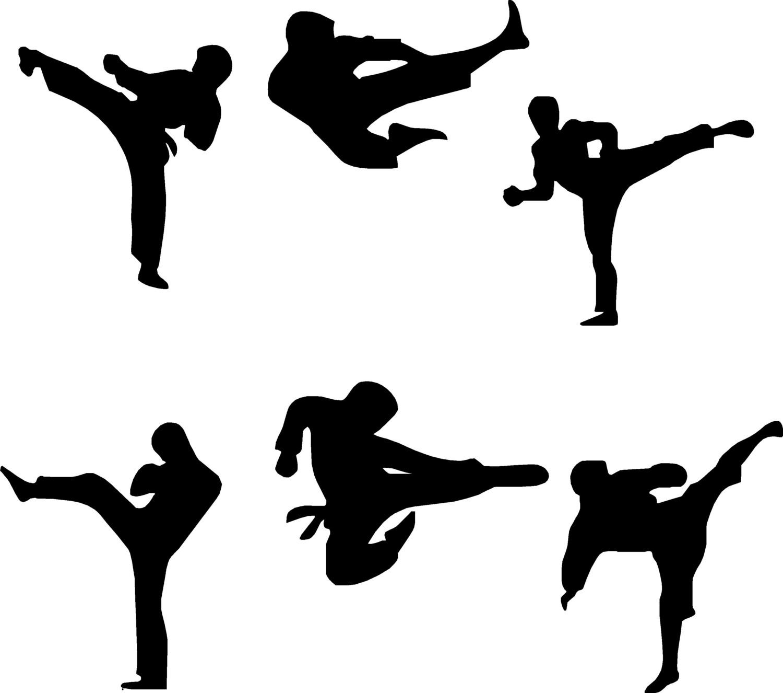 How Do Karate Kicks