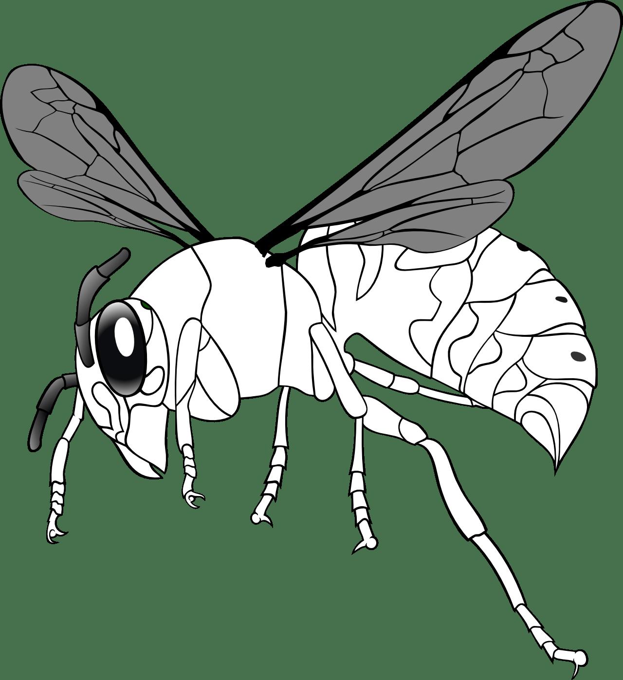Bee Line Art - ClipArt Best (1280 x 1397 Pixel)