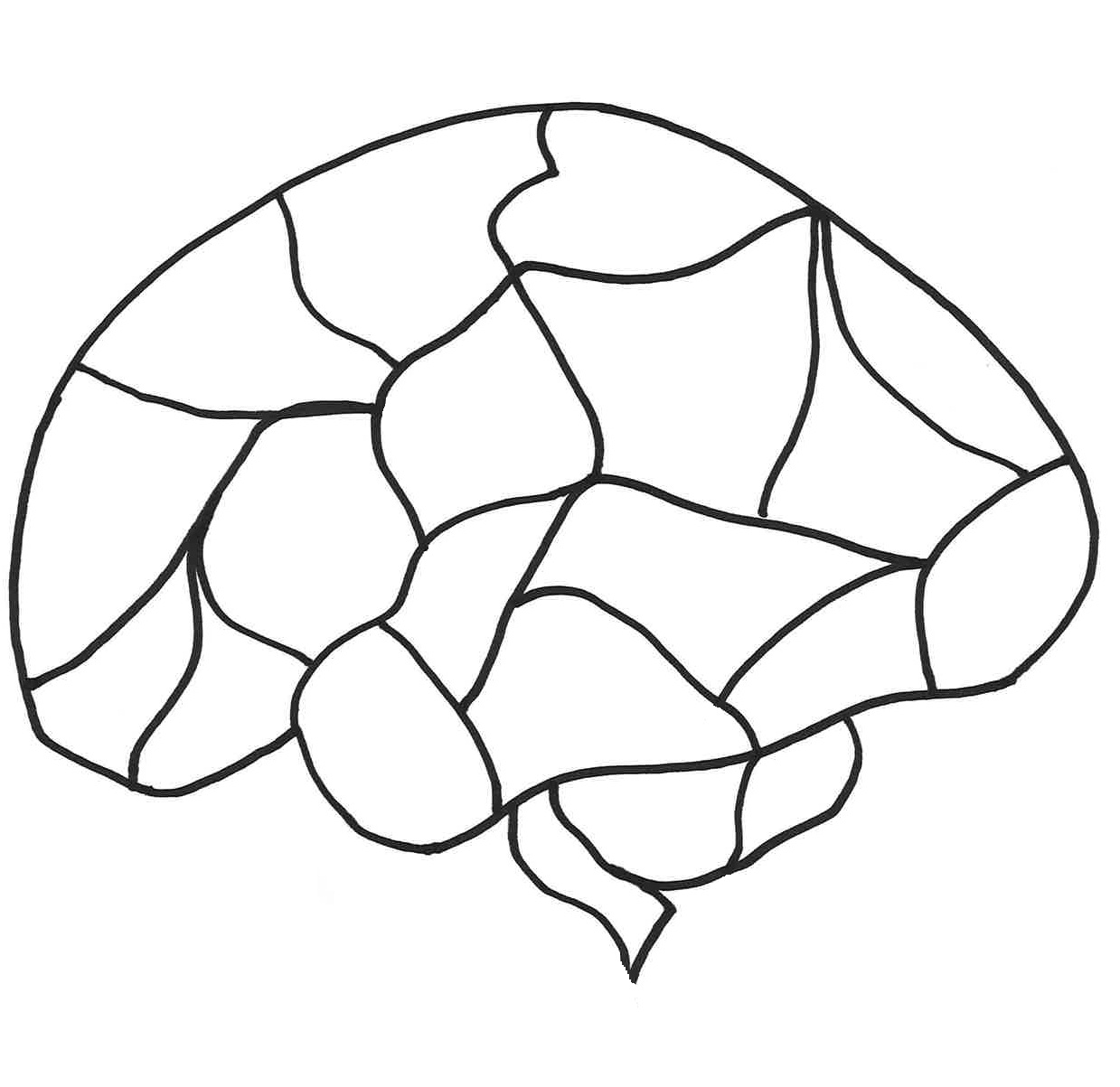 Fill In The Blank Brain Diagram