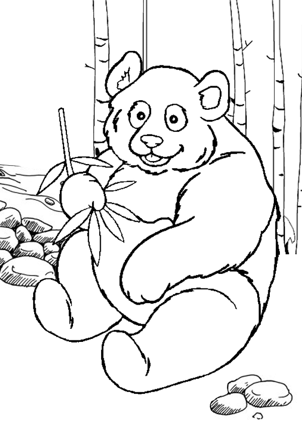 cute panda coloring page bear coloring pages ikids page