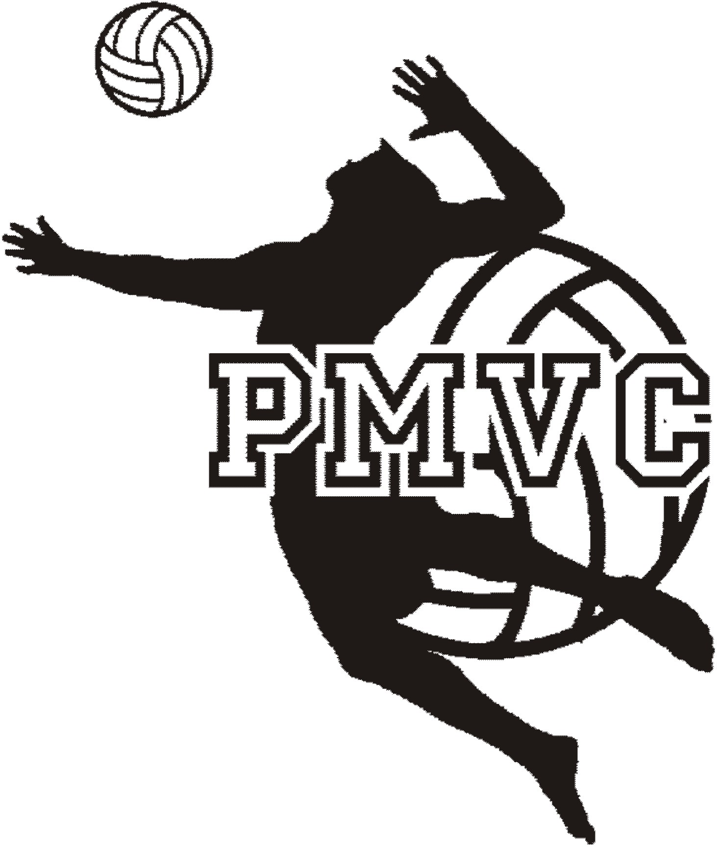 Beach Volleyball Logos