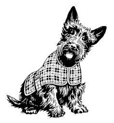 Scottie Dog Clipart