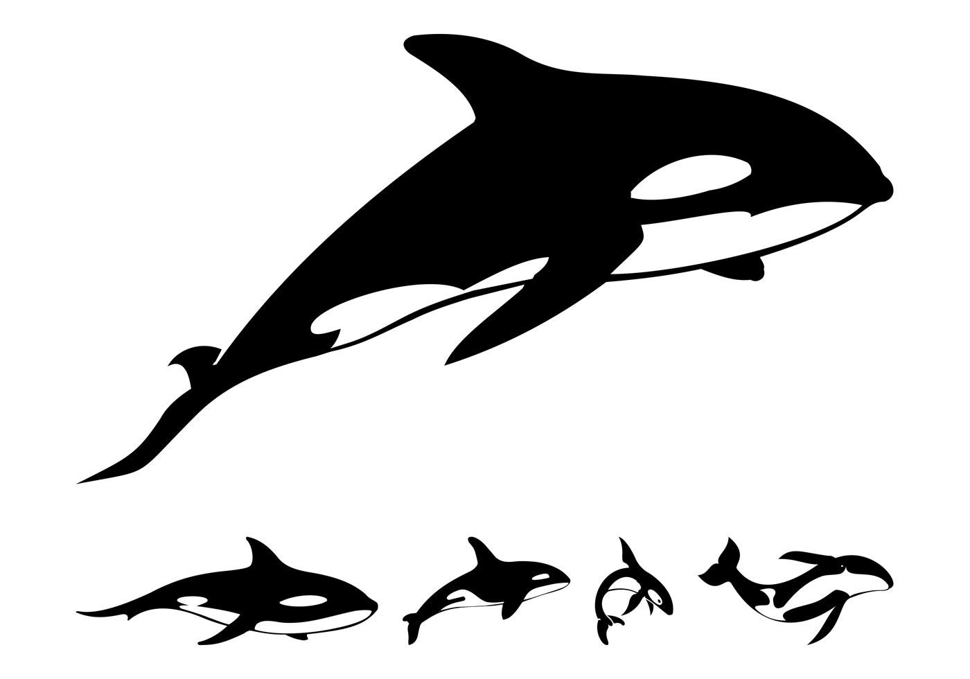 Orca Whale Outline