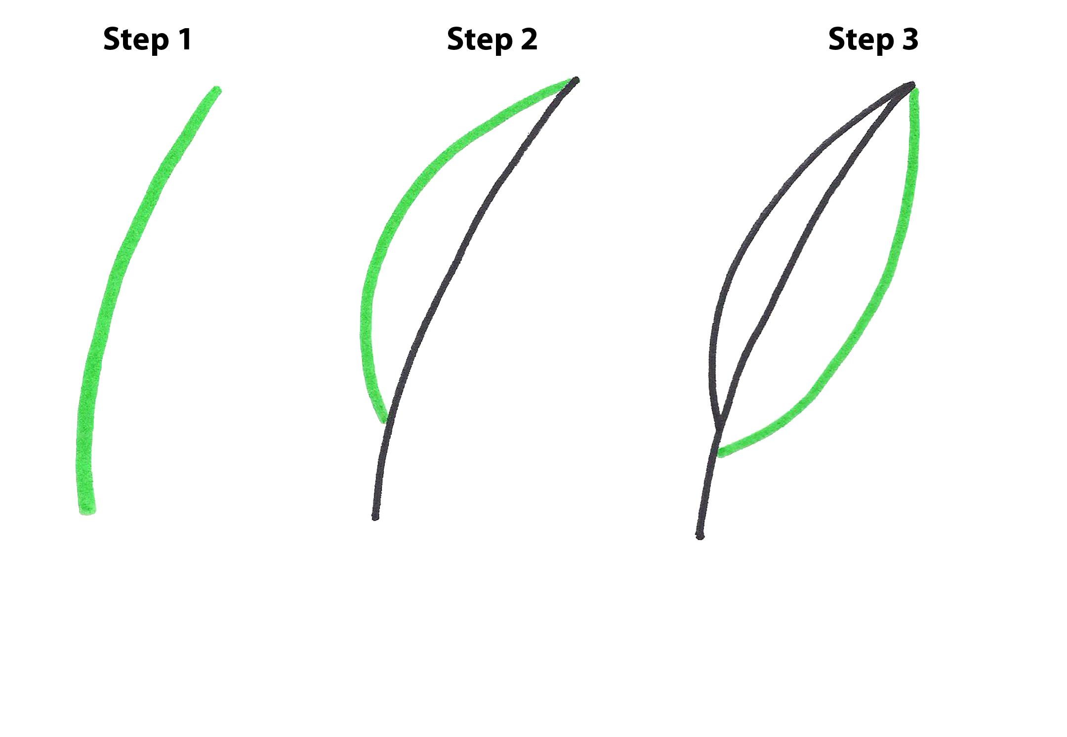 Draw A Leaf Mellos