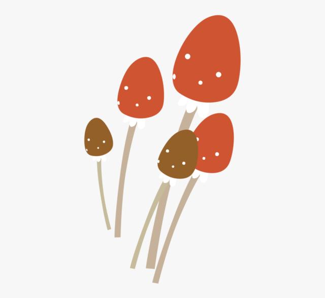 Line Mushroom Chicken And Mushroom Pie Animasi Jamur Tiram Png Free Transparent Clipart Clipartkey