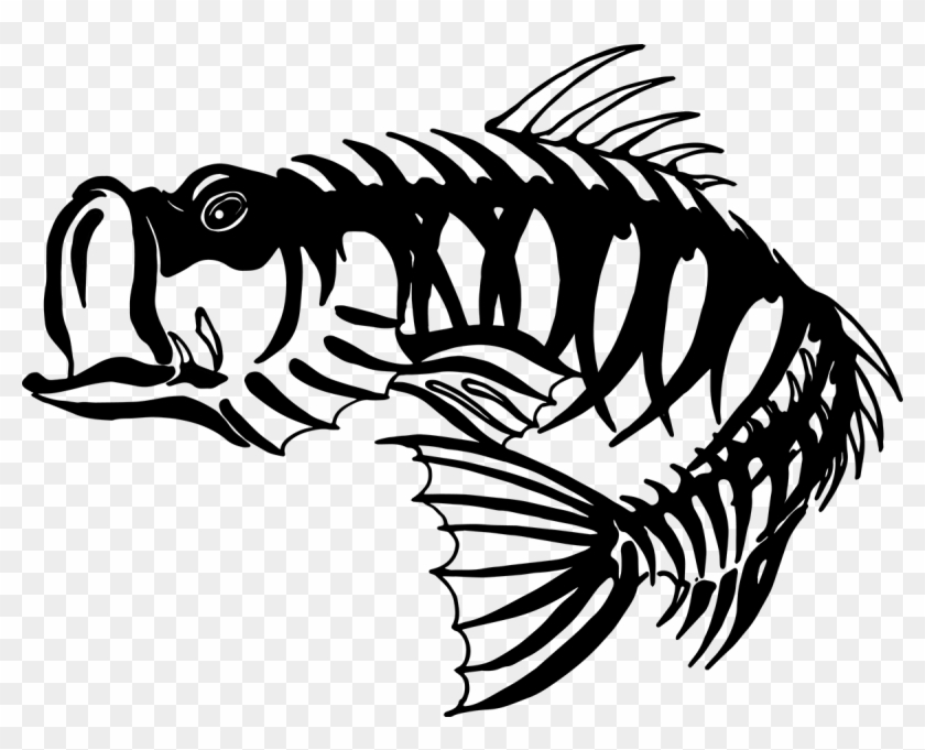 Free Bass Skeleton Cliparts Download Free Clip Art Bass Fish Skeleton Free Transparent Png Clipart Images Download