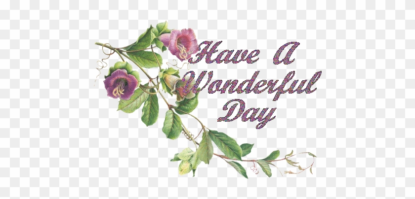 Free Have A Nice Day Images For Facebook Good Morning All Friends Have A Nice Day Free Transparent Png Clipart Images Download