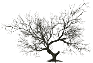Wicked Halloween Tree Clipart