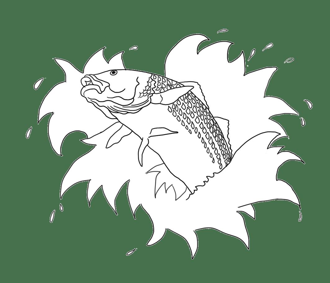 Colorful Koi Fish Drawings