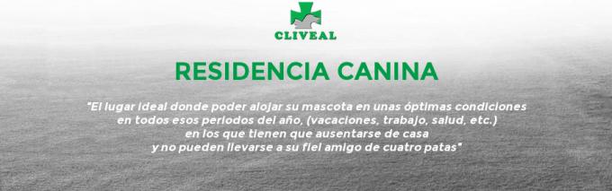 SLIDER 4 (RESIDENCIA CANINA)