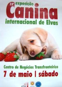 cartel-exposicion-canina-elvas-2016