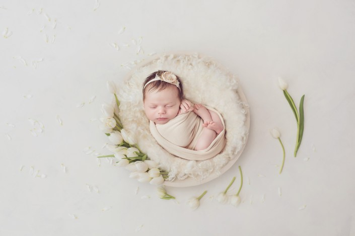 Studio Newborn Photo Shoot, Dallas Newborn Photographer, Frisco Newborn Photographer