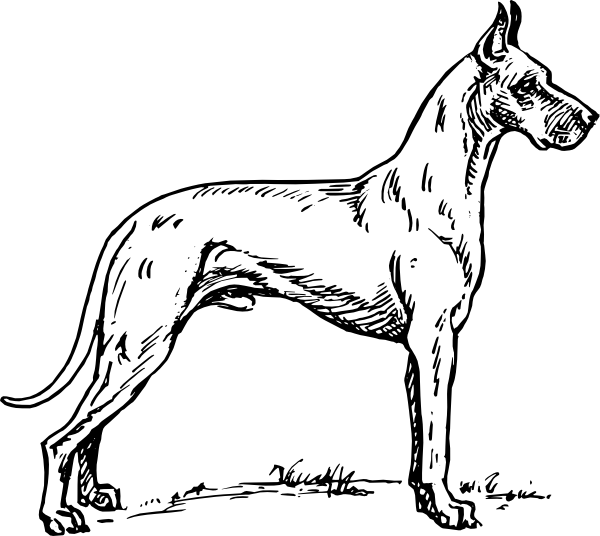coloring pages additionally great dane coloring pages on cute great