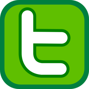 Image result for twitter icon green