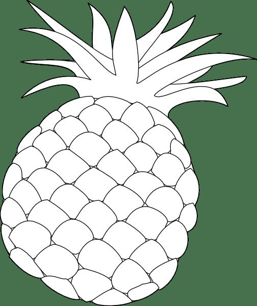 Pineapple Outline Clip Art at Clker.com - vector clip art ... (504 x 600 Pixel)