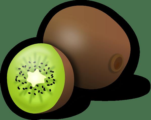 Kiwi Clip Art at Clker.com - vector clip art online ... (600 x 476 Pixel)
