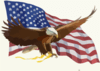 https://i2.wp.com/www.clker.com/cliparts/M/Z/n/1/q/4/eagle-flag-engle-bob-th.png
