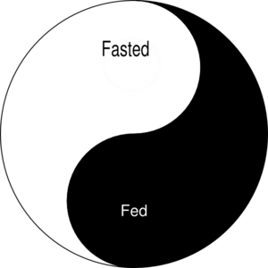 Image result for fasted