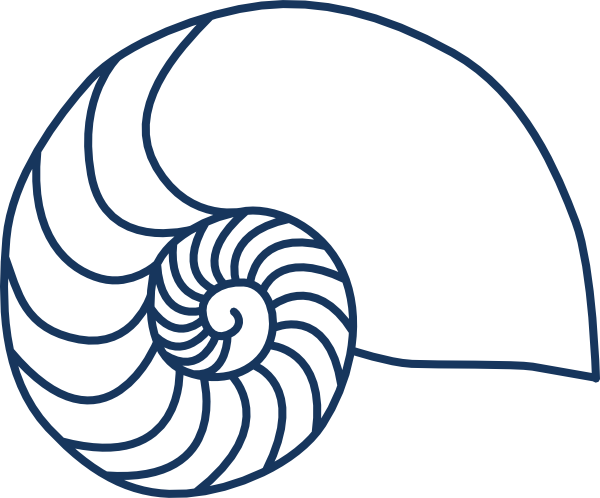 simple nautilus shell outline nautilus navy blue clip art