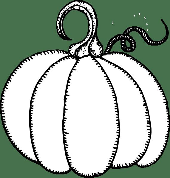 Pumpkin Outline Clip Art at Clker.com - vector clip art ... (570 x 594 Pixel)