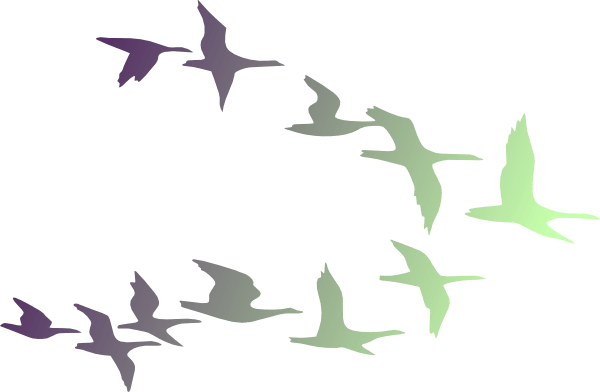 Image result for Flock of Geese Clip Art