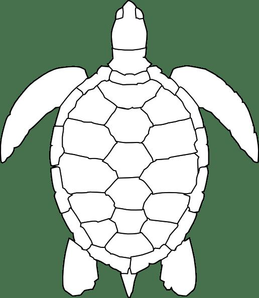 cartoon turtle pattern turtle outline clip art