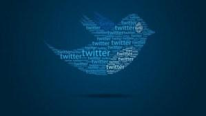 Twitter Logo in the shape of a bird