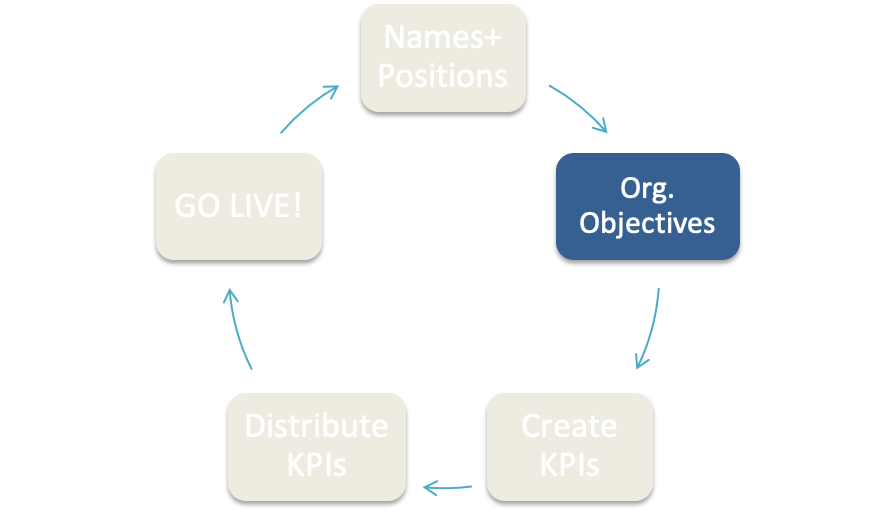 Organization's Objectives in C2Do