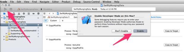 Enabling developer mode.