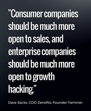 Consumer companies should be much more open to sales, and enterprise companies should be much more open to growth hacking. - David Sacks